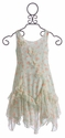Biscotti Girls Special Occasion Dress