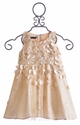 Biscotti Gold Holiday Dress for Girls Falling for Dots