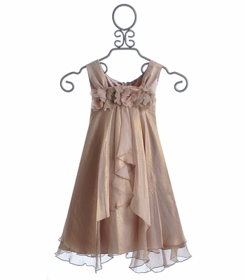 Biscotti Shimmering Rose Tween Holiday Dress Sleeveless