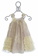 Isobella and Chloe Elegant Girls Dress with Ivory Rose Embellishment (5,6X,7)