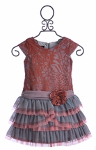 Isobella and Chloe Girls Drop Waist Dress in Coral Lace (Size 4)