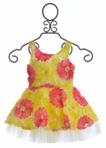 Le Pink Girls Spring Dress Beautiful Belle (6X,7,10)