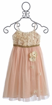 Le Pink Girls Special Occasion Dress (4, 6X, 8, 10)
