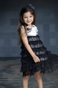 Le Pink Lovely Lace Ruffle Dress for Girls