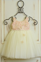 Le Pink Tutu Dress with Pink Lace PREORDER