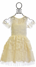 Mae Li Rose Fancy Girls Dress in Ivory Embroidery (Size 8)