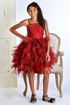 Ooh La La Couture Girls Red Sparkle Dress in High Low