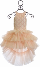 Ooh La La Couture High Low Dress in Pink