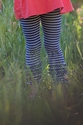 Persnickety Alpine Daisy Gracie Leggings for Girls with Navy Stripes
