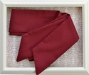 Persnickety Autumn Splendor Sash in Red (Size 12-24 Mos)