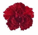 Red Crinkled Velvet Jeweled Hairbow