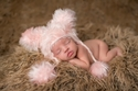 The Daisy Baby Dakota Pink Bear Hat with Poms