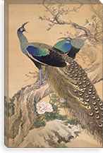 A Pair of Peacocks in Spring By Imao Keinen Canvas Print #13690