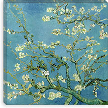 Almond Blossom By Vincent van Gogh Canvas Print #14320