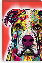 American Bulldog By Dean Russo Canvas Print #13525