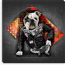 Bad Dog By Maximilian San Canvas Print #MXS40
