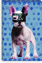 Bulldog Blue By Luz Graphics Canvas Print #LUZ64