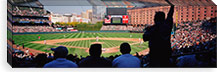 Camden Yards Baseball Game Baltimore Maryland USA #PIM3391