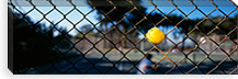 Close-up of a tennis ball stuck in a fence, San Francisco, California, USA #PIM6466