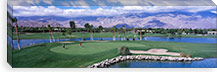 Golf Course, Palm Springs, California, USA #PIM1565