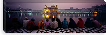 Group of people at a temple, Golden Temple, Amritsar, Punjab, India #PIM5479