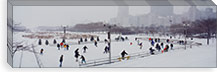 Group of people ice skating in a park, Bicentennial Park, Chicago, Cook County, Illinois, USA #PIM3758