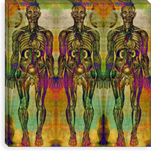 Human Anatomy Composition #8 Canvas Print #UVP46g
