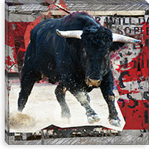 Mad Toro By Luz Graphics Canvas Print #LUZ33