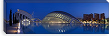 Opera house at the waterfront, Ciutat De Les Arts I Les Ciencies, Valencia, Spain #PIM9346