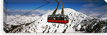 Overhead cable car in a ski resort, Snowbird Ski Resort, Utah, USA #PIM8688