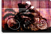 Palms Racer 17 Canvas Print #UVP69