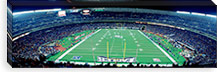 Philadelphia Eagles NFL Football Veterans Stadium Philadelphia PA #PIM3833