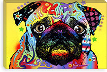 Pug By Dean Russo Canvas Print #4207