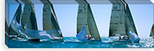 Sailboat racing in the ocean, Key West, Florida, USA #PIM3085