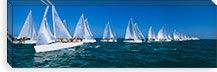 Sailboat racing in the ocean, Key West, Florida, USA #PIM3204