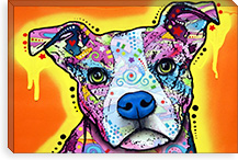 Serious Pit By Dean Russo Canvas Print #13542