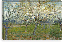 The Pink Orchard By Vincent van Gogh Canvas Print #14412