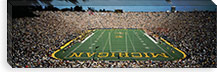 University Of Michigan Stadium, Ann Arbor, Michigan, USA #PIM1156