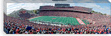 University Of Wisconsin Football Game, Camp Randall Stadium, Madison, Wisconsin, USA #PIM3446