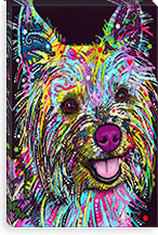 Yorkie By Dean Russo Canvas Print #4215