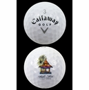 Callaway Golf- Warbird Logo Overrun Golf Ball Dozens *3-Dozen*