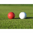 Eyeline Golf Ball of Steel Putting Aid 3-Pack