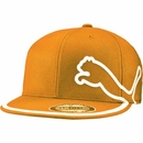 Puma Golf- Monoline 210 Performance Cap