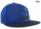Puma- Heritage 210 Fitted Hat