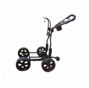 Upright Caddy- 2013 RASR 4-Wheel Electric Cart