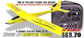 3-Channel Slope Diver EP RTF Radio Remote Controlled RC Airplane RTF 3380-2Y_AccipiterBadiusYellow