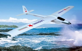 "3-Channel ""Thunderbolt"" Radio Remote Controlled RC Sail Airplane RTF"