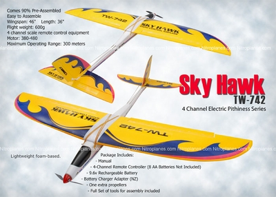 4 Channel Sky Hawk TW-742 Electric Pithiness Series Airplane