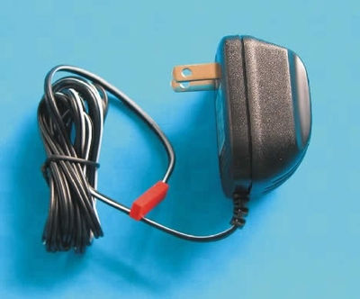 Charger 110V USA (two feet, flat)