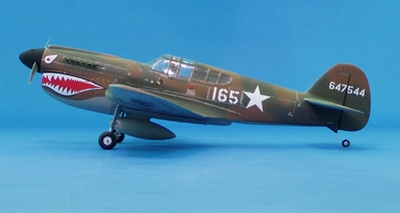 "CMP P40 Warhawk 50 - 54"" Nitro Gas ARF Radio Remote Controlled RC Airplane RC ""Tiger Shark"" Plane"